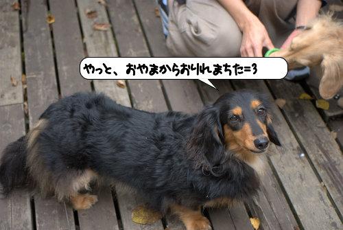 20121013_144530.jpg