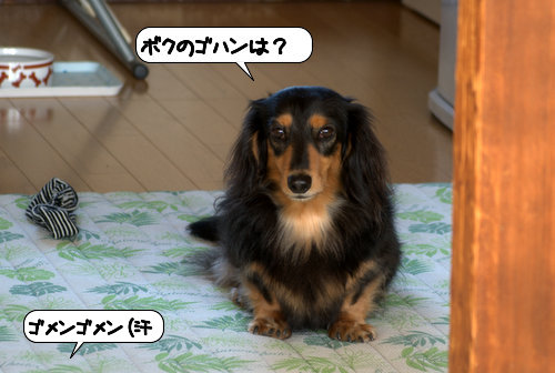 20121026_144129.jpg