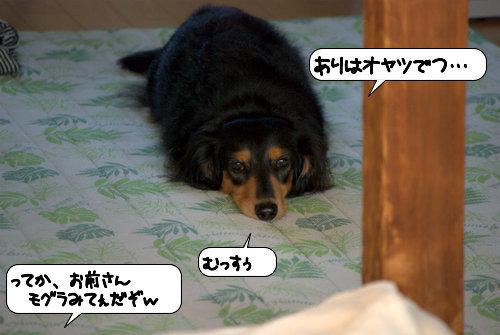20121026_144308.jpg