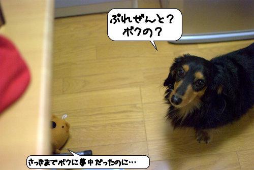 20121226_104228.jpg
