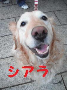 DSCF4698.jpg