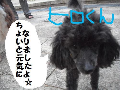 DSCF5589.jpg