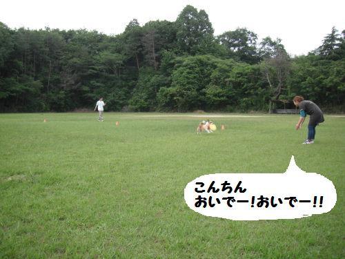 DSCF5712.jpg