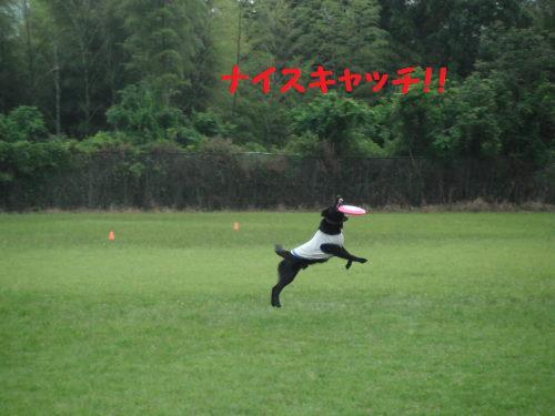 DSCF5722.jpg