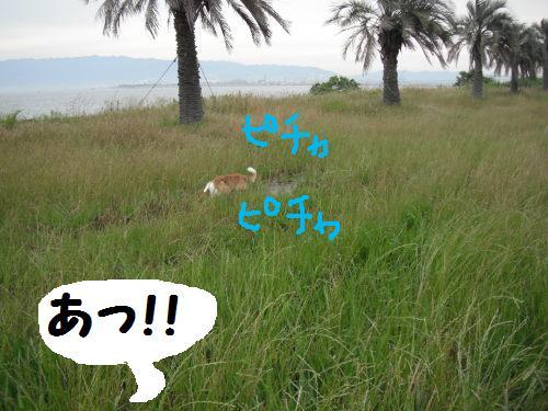 DSCF5929.jpg
