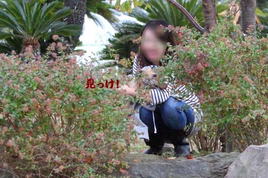 IMG_4548_20141031224455f5a.jpg