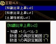 20100503Sai_002.jpg