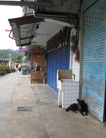 20110912jupundog.png