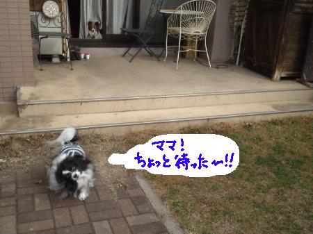 mini_130112_1008.jpg