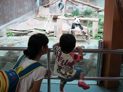 チェンマイ動物園へ