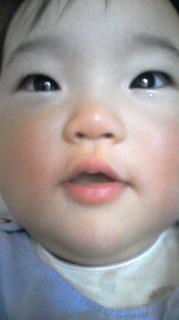 SBSH0156.jpg