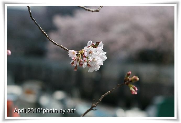 201004_9408.jpg