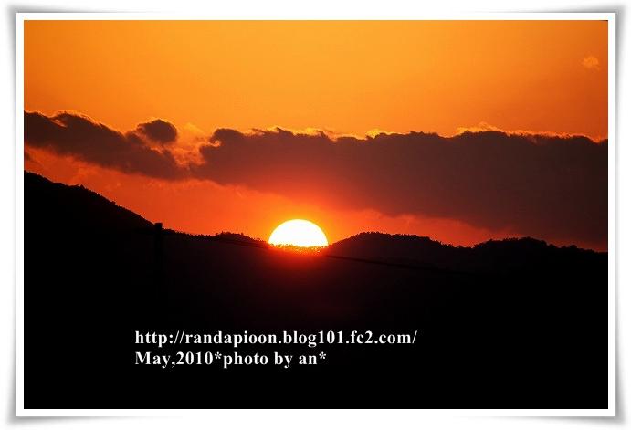 20100512_7229.jpg