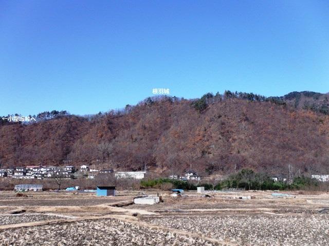 根羽城2013(上田市) 125