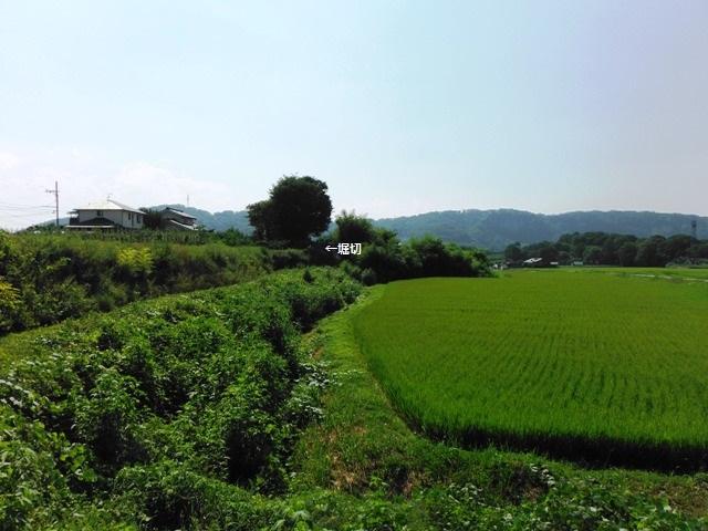 森山城(小諸市) (12)
