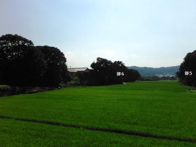 森山城(小諸市) (30)