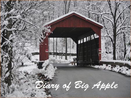 橋も雪景色