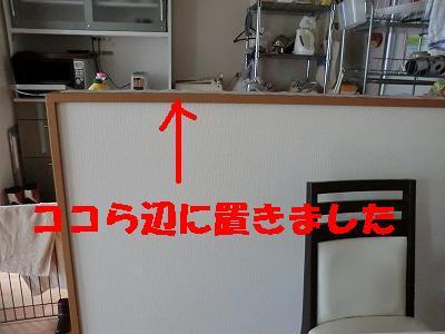 CIMG0279.jpg