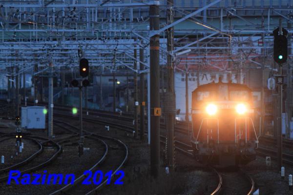 IMG_5632.jpg