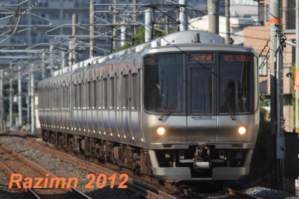 IMG_7381.jpg
