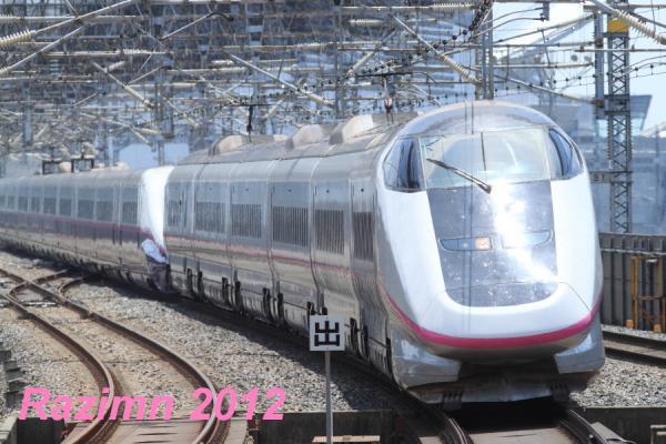 IMG_8981.jpg