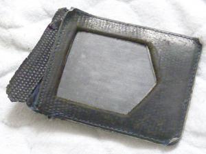 P1050334.jpg
