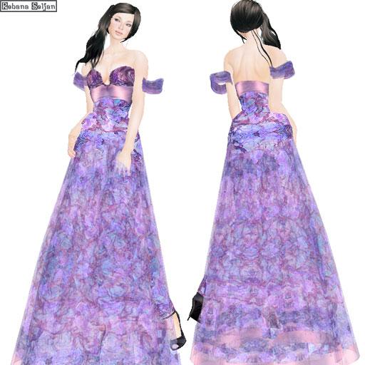SAS - February 2010 Gown