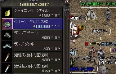 20110228-1-LinC0012.jpg