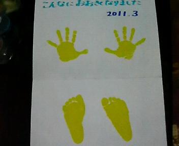 蓮2011手型足型