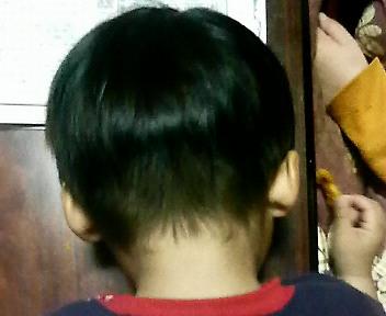 髪切った蓮