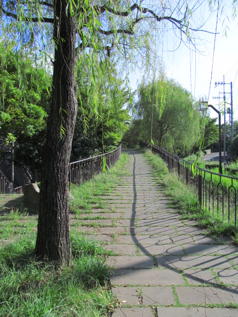 03Aコース散歩 022