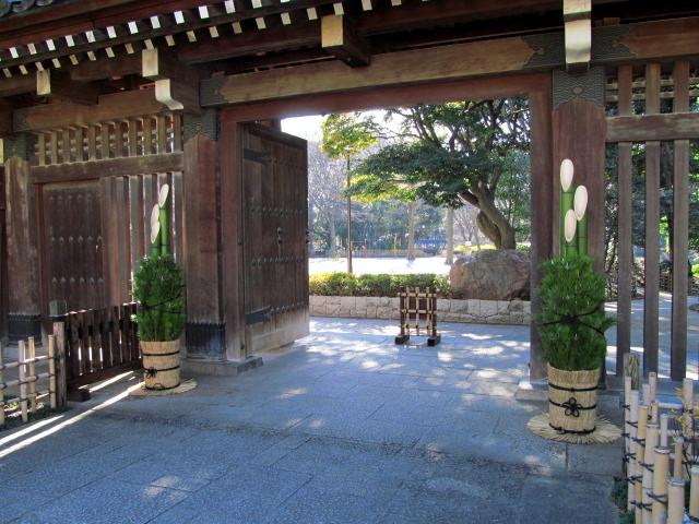 ヒマラヤ桜 006