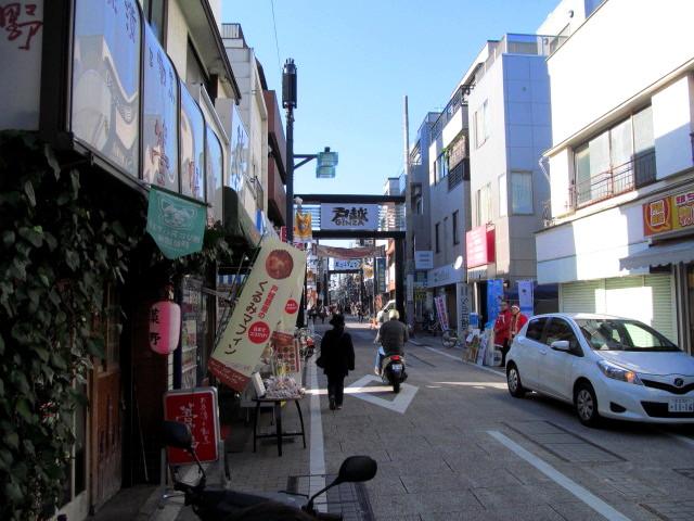 ヒマラヤ桜 008