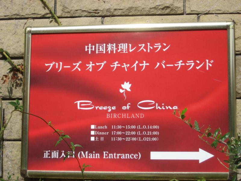 chinois03_convert_20111021150018.jpg