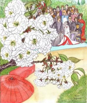 ブログ八重桜