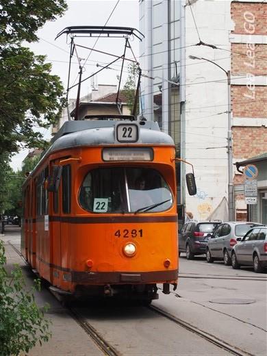 P1013644.jpg