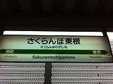 035_20111120202213.jpg