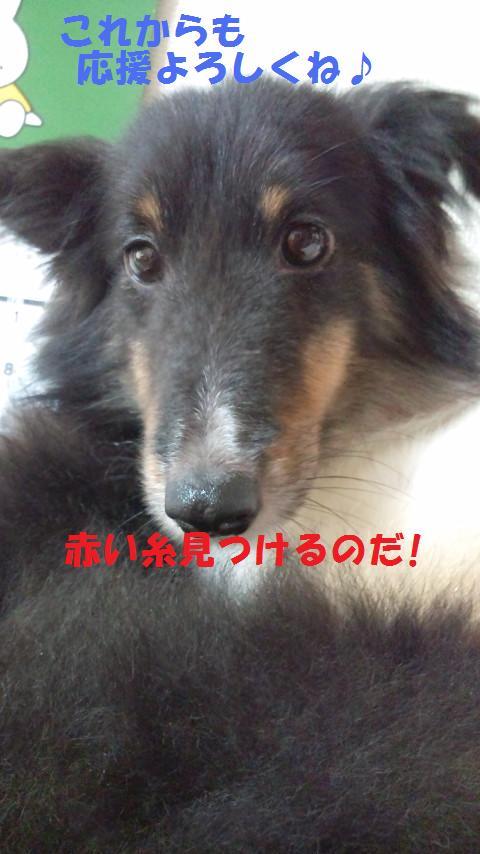 sういちゃん