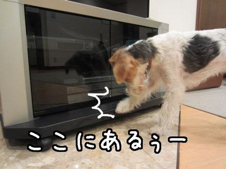 2_20131218233131144.jpg