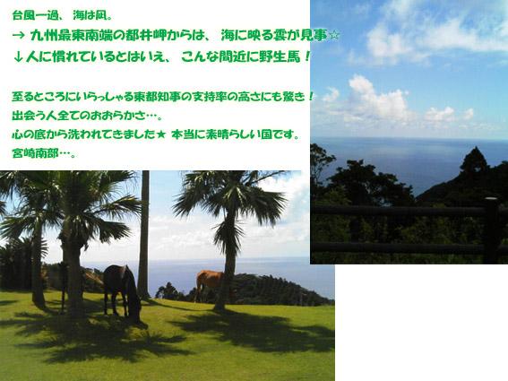 宮崎のコピー.jpg