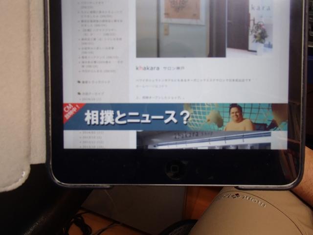 PA241480.jpg