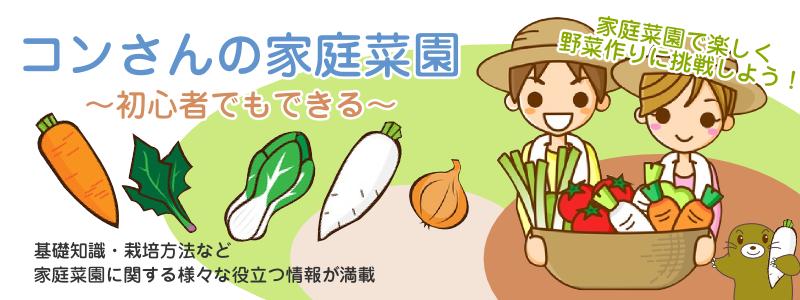 コンさんの家庭菜園〜初心者でもできる〜相互リンク集