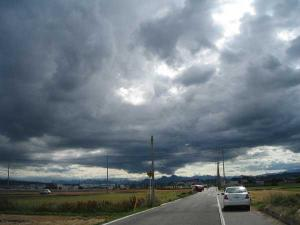 20100616-1.jpg