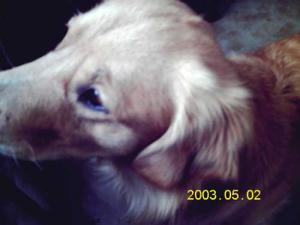 20101015-3.jpg