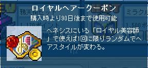 メイプル_110126_160931