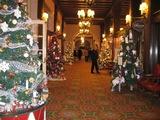 クリスマスツリー(複数)