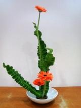 体験レッスンで生けた花