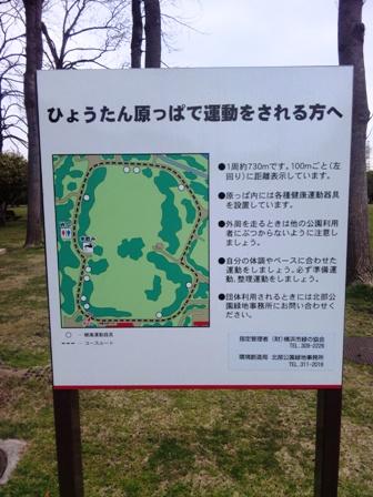岸根公園 ひょうたん芝生の図