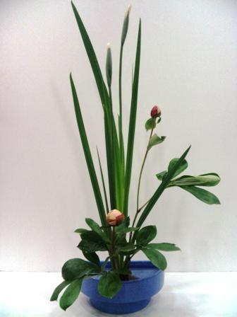 花菖蒲と芍薬