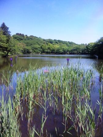三ツ池公園4